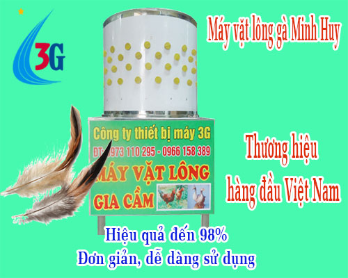 may vat long ga 3g